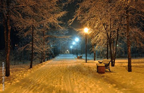 zimowy-zasniezony-park-miejski