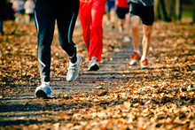 People Running In The Autumn R...