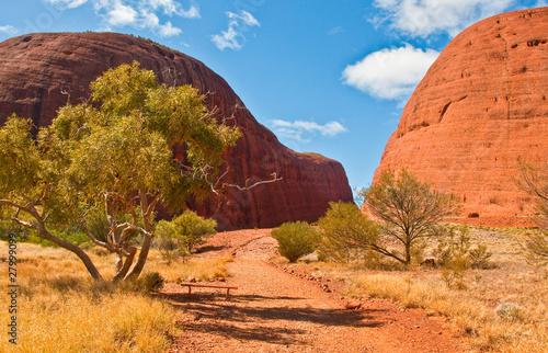 In de dag Australië view of Kata Tjuta, australian red center