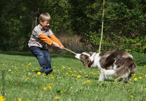 Fotografía  enfant et chien se disputant un bâton - boy and dog