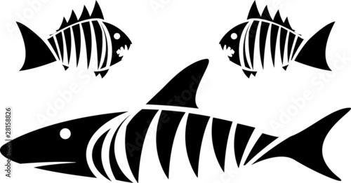 Valokuva  Tiger shark and piranhas. stencil