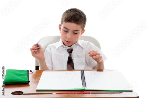 Fotografie, Obraz  School student examining his work