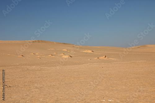 Staande foto Zandwoestijn Sahara desert