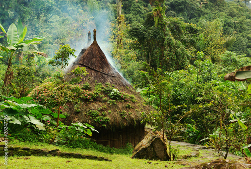 Fotografía  Small kogi hut in Northern Colombia