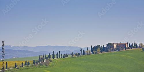 Aluminium Prints Tuscany Landgut mit Zypressenallee