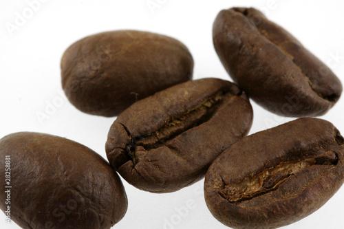 Recess Fitting Coffee bar des grains de café