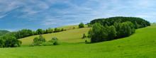 Fresh Summer Meadow