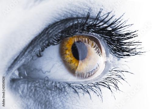 Poster Iris eye