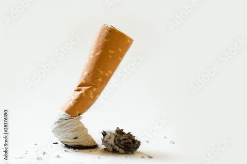 Fotografie, Obraz  mégot de cigarette