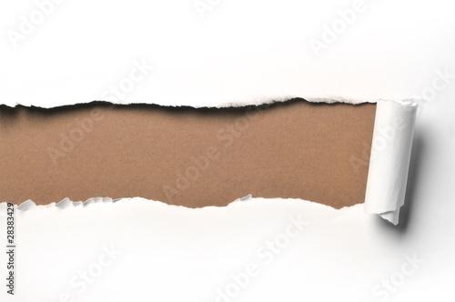 Cuadros en Lienzo ripped paper