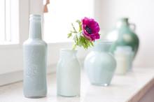Vasen Mit Blüte Am Fenster