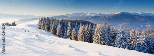 Fototapeta zima zimowy-krajobraz