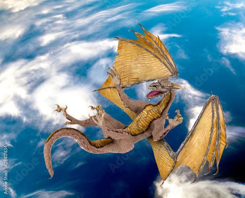 Poster Draken dragon blue sky fall