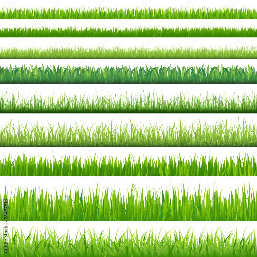 Wielkie trawy