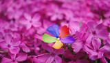 Fototapeta Kwiaty - radość