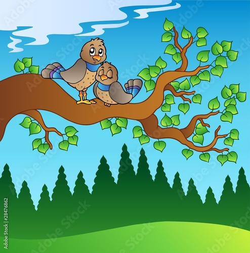 Poster Oiseaux, Abeilles Two cute birds sitting on branch