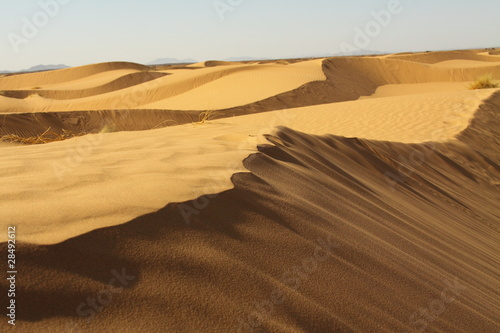 Poster de jardin Desert de sable Sahara Desert Morocco