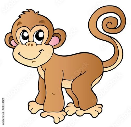 Foto op Aluminium Zoo Cute small monkey