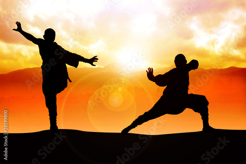 Fotografia  Silhouette illustration of two figures doing martial art stance