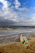 Kiteboard / Surfbrett an der Nordseeküste