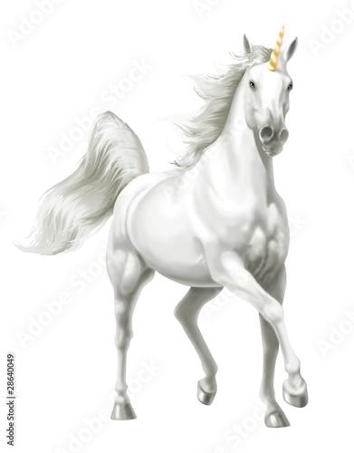Fotografie, Obraz  unicorno