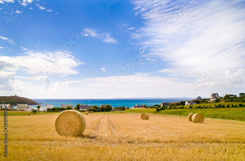 Fotografiet paysage de campagne maritime en bretagne