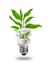 Energy Saving Eco Lamp With Green Values Concept