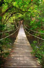 Fototapeta Las Bridge to the jungle,Khao Yai national park,Thailand