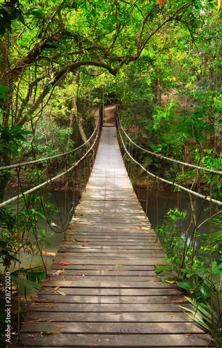 Tuinposter Bruggen Bridge to the jungle,Khao Yai national park,Thailand