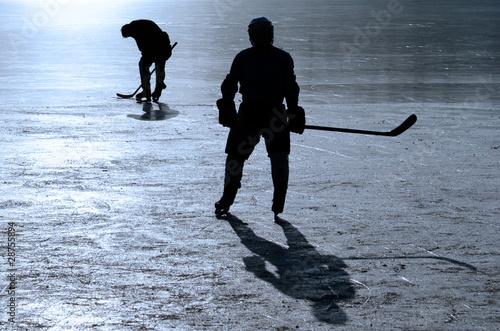 Photo  Hockey Player