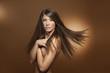 canvas print picture - Flying Hairs lange braune Haare glatt
