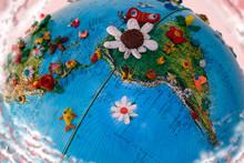 Flowered South America Globe