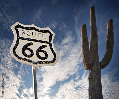 Photo  Route 66 with Saguaro Cactus