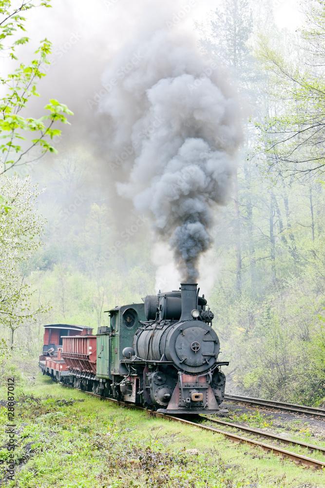 Fototapeta narrow gauge railway, Banovici, Bosnia and Herzegovina - obraz na płótnie