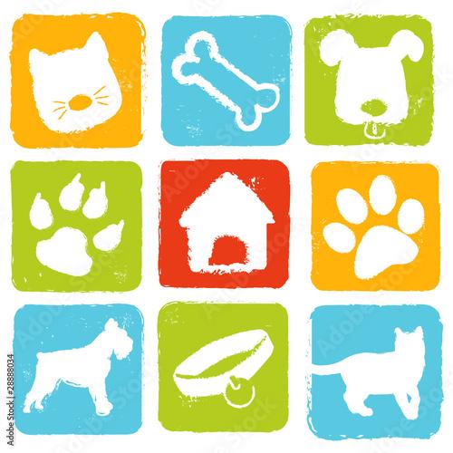 Fotografía  icones chien et chat