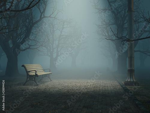lonely bench in misty park Fototapeta