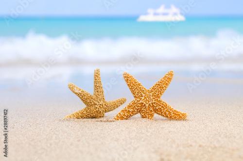 Doppelrollo mit Motiv - two starfish on beach, blue sea and white boat (von Elena Moiseeva)