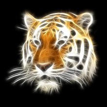 Fractal Tiger Illustration