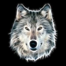 Fractal Wolf Illustration