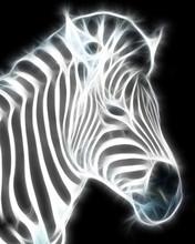Fractal Zebra Illustration