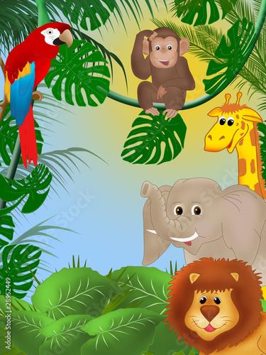 dzungla-ze-zwierzetami
