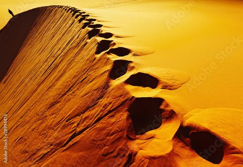 Staande foto Algerije Footprints on sand dune