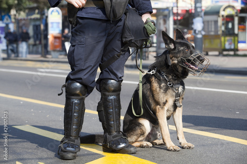 Fényképezés police dog