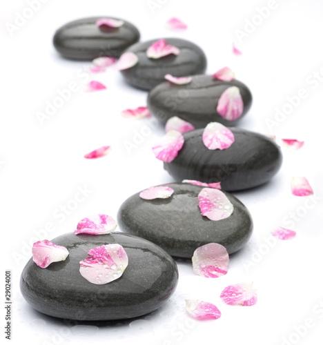 kamienie-z-rozanymi-platkami-na-bialym-tle