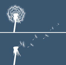Two Dandelion Buds Silhouette On Blue Background Vector