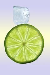 Limette mit Eiswürfel