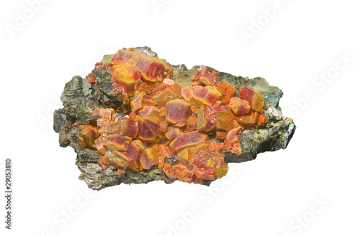 Red realgar crystals with orpiment on white, arsenic mineral. Canvas Print