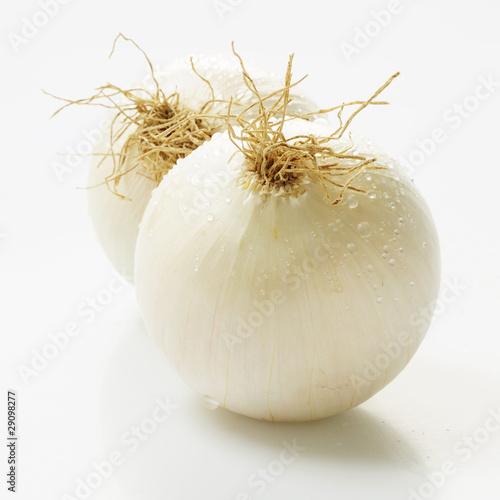 Photo Petits oignons blancs