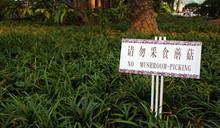 Chingrish/Engrish Sign In Guan...