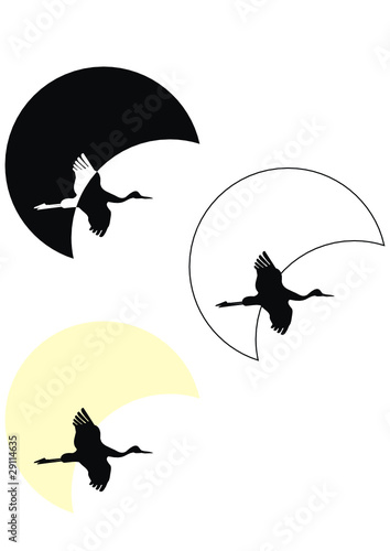 Poster de jardin Chambre bébé Set of silhouettes of flying crane against moon